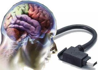 Un cerebro artificial sera construido por IBM