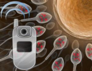 Los celulares y la esterilidad masculina | Estudios nuevos