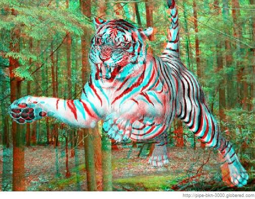 Imágenes para ver con gafas 3D (3000 fotos)