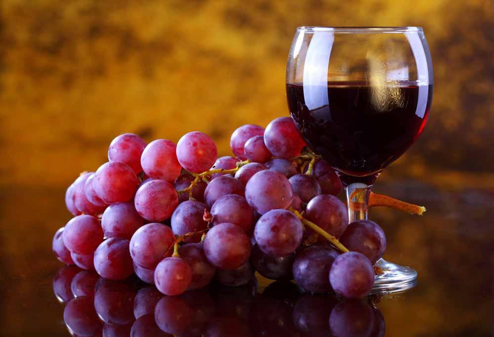 El secreto del vino, porque el vino es bueno para la salud